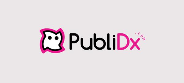 publidx-2013
